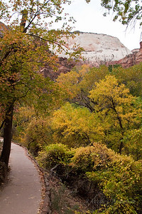 Walking down from Weeping Rock - Zion National Park.