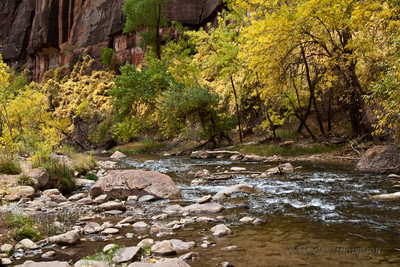 The North Fork of the Virgin River - Zion National Park.