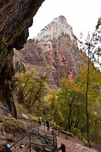 Looking from under Weeping Rock, Zion National Park.