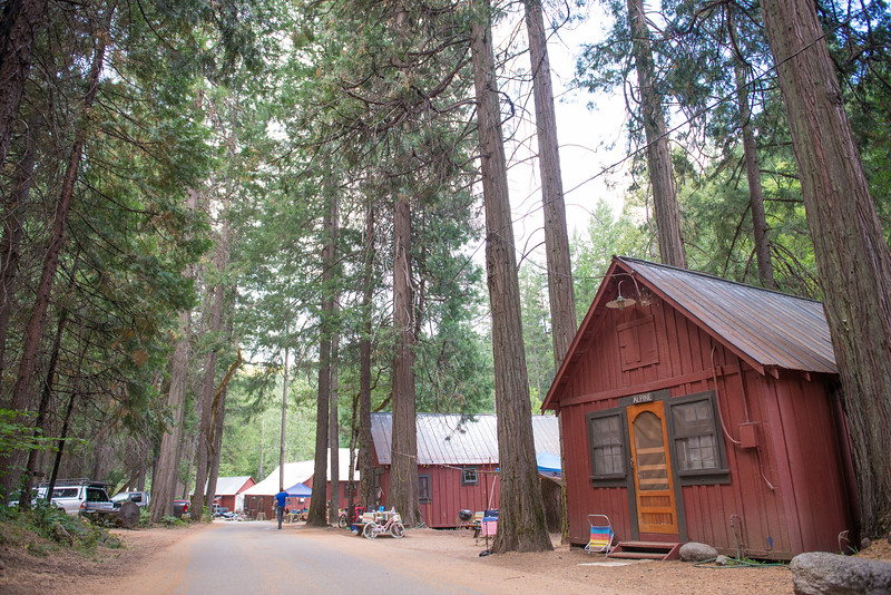 Trinity Alps Resort cabins