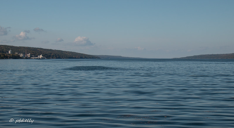 Went to Watkins Glen Marina on Seneca Lake .  Brilliant blue again.