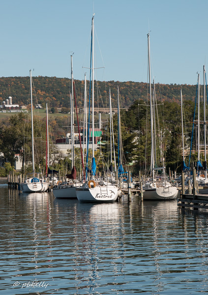 The proximity of a large dairy farm to the Marina and Lake was unexpected.
