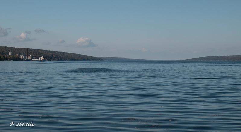 Went to Watkins Glen Marina on Seneca Lake .  Brilliant blue again.