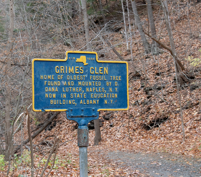 The next 7 shots are from Grimes Glen County Park in Naples New York.  This is definitely worth a trip a little earlier in the year.