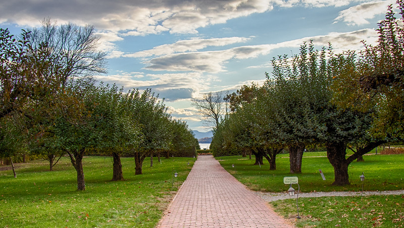 View to the Hudson through the Apple Orchard which has classic varieties.