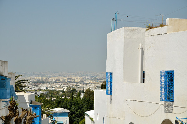 Rooftop view of Tunis from Sidi Bou Said