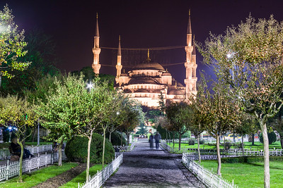 Istanbul at Night with Mosque in Background