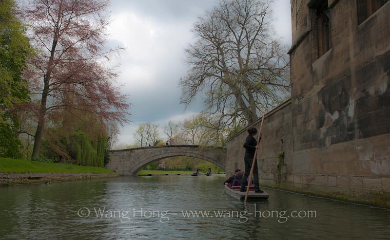 On River Cam, Cambridge, English, late April 2014.