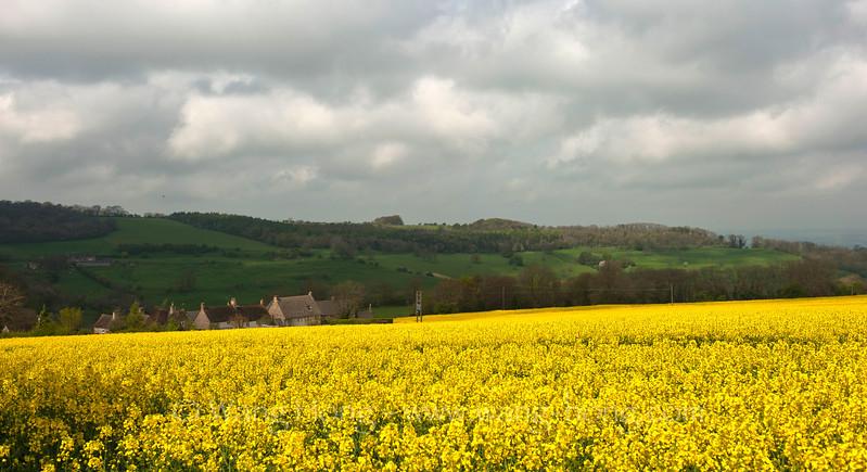Fields around Snowshill, Cotswolds, English.