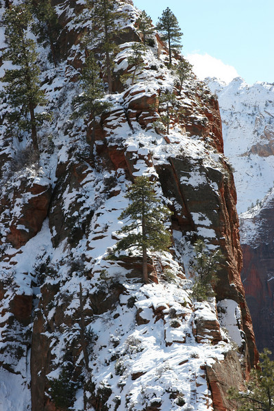 From the saddle in Angels Landing Trail towards the trail's final ascent (Zion).