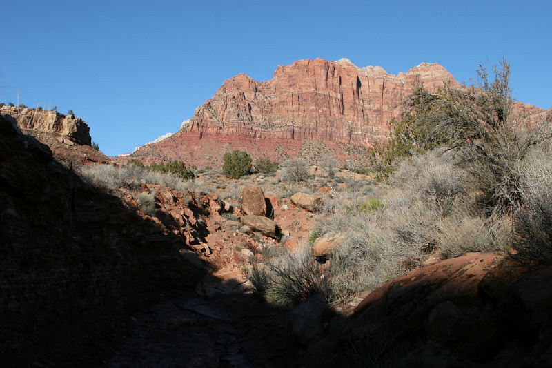 North from Huber Wash Trail in Zion.