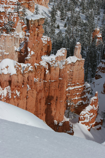 Rim trail, Sunset Point  in Bryce.
