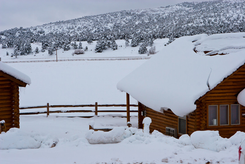 "Zion Mountain Ranch, a few miles east of Zion Park's east gate. See: <a href=""http://zmr.com"">http://zmr.com</a>"