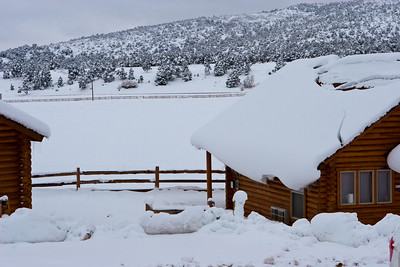 Zion Mountain Ranch, a few miles east of Zion Park's east gate. See: http://zmr.com