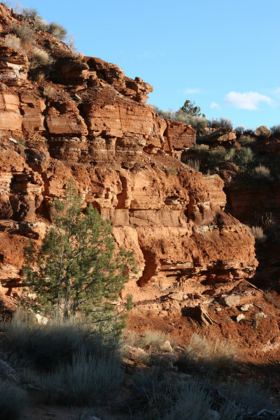 Huber Wash Trail in Zion.