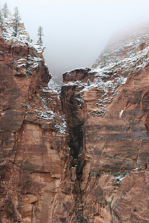Lower section of the East Rim Trail from the Weeping Rock parking lot in Zion.