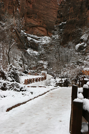 The Riverside Walk along the North Fork of the Virgin River from the Temple of Sinawava parking lot up to the Narrows in Zion.