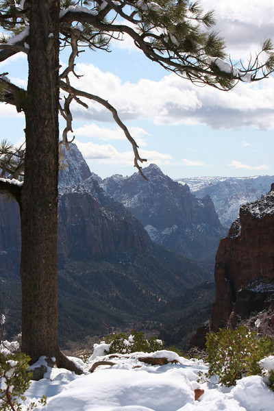 Southeast down the North Fork of the Virgin River from the saddle in Angels Landing Trail in Zion.