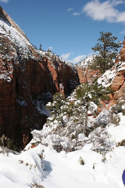 West from the saddle in Angels Landing Trail in Zion.
