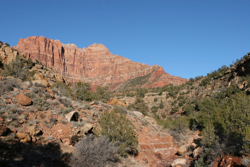 Northeast from Huber Wash Trail in Zion.