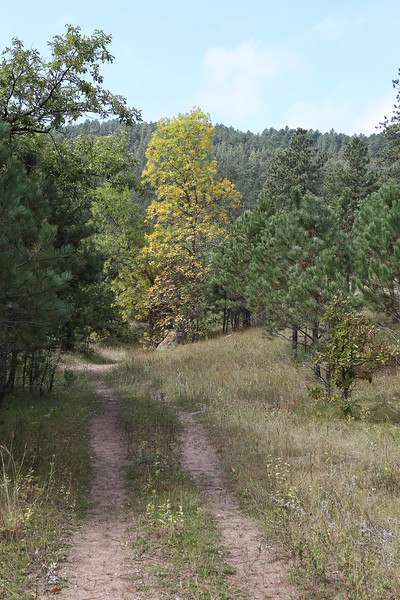 September 17, 2017 - Custer State Park, French Creek Natural Area.