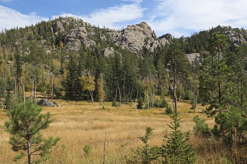 September 18, 2017 - Custer State Park. Hiking up Black Elk (Harney) Peak. Meadow near the lower end of the trail.