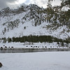 Zephyr Adventures. February 17, 2014. Bison along the Madison River, West Entrance Road, Yellowstone National Park.