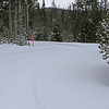 Zephyr Adventures. February 18, 2014. Lone Star Geyser Trial, Yellowstone National Park.