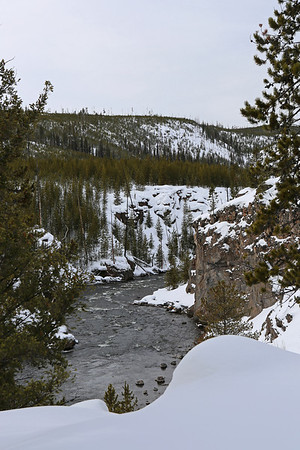 Zephyr Adventures. February 17, 2014. Snowshoeing on Firehole Canyon Drive along the Firehole River south of Madison, Yellowstone National Park.