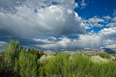 Late afternoon clouds near Mono Lake, California.