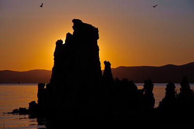 Sunrise silhouttes the south tufas at Mono Lake, California.