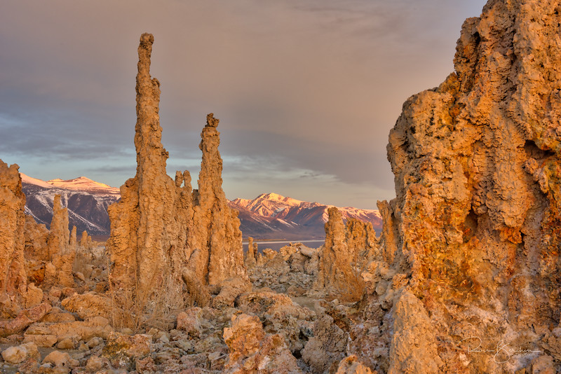 Tufa at sunrise, Mono Lake