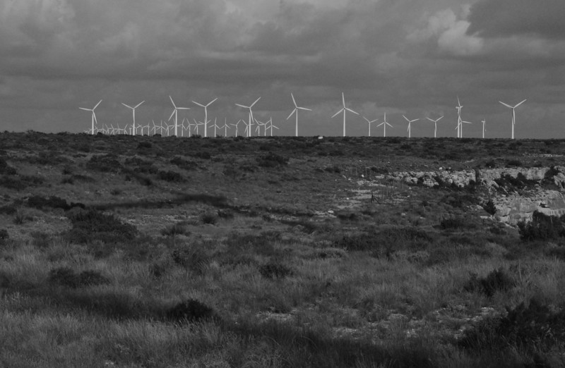 Wind Farm - West Texas