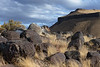 Boulder fields in Celebration Park. The large rounded volcanic boulders scattered around the Snake River valley are remnants from Lake Bonneville floods around 15,000 years ago. The floods were so large they moved truck size boulders around like river gravel.
