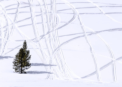Snowmobile tracks on a hill just south of Stanley. We wanted to get a good look at the Sawtooths in winter but they were fogged out so these criss-crossing tracks had to do.