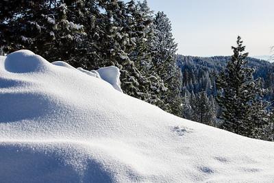 I never tire of fresh snow powder in sunlight.