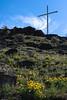Table Rock Cross and arrowleaf balsamroot flowers.