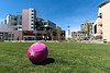 A pink ball on the lawn of the Simplot Plaza.  I know corporate plazas are an attempt to create interesting and inviting public spaces but with few exceptions, they just don't work.  You don't feel welcome hanging out in such spaces and pink toys won't fix it.