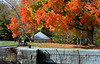 Jones Locks in fall