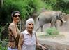 Mali and Mahin watching Saint Louis zoo elephants.