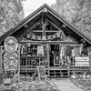 Talkeetna, Alaksa - The town has a load of these lovely little gift shops