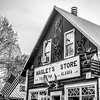 Hagley's General Store, the only store in town and the home of the Mayor Stubbs (The Cat!)
