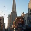 China Town in San Francisco.