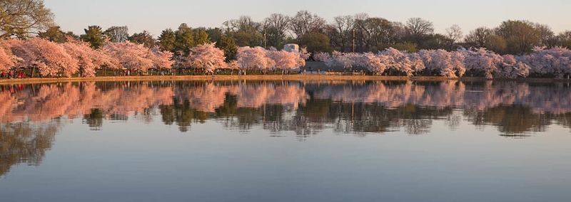 Sunrise on the Tidal Basin, Washington, DC