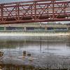 Bridges over Fox River in Elgin, Illinois