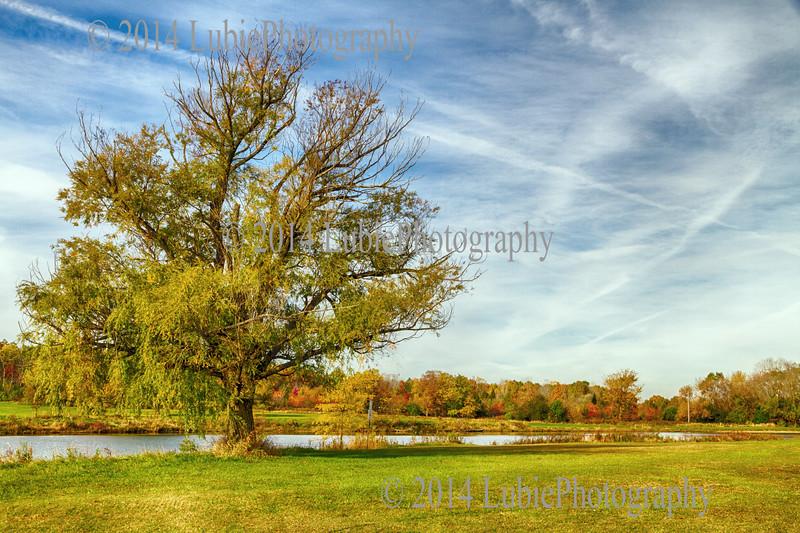 Bode Lake. Streamwood, IL