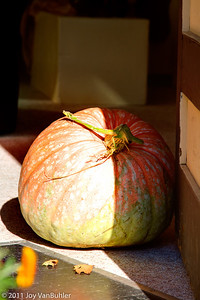 Pumpkin used as a door stop