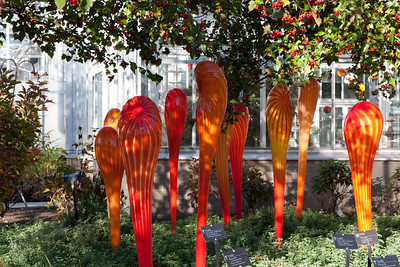 Glass Garden by Dale Chihuly