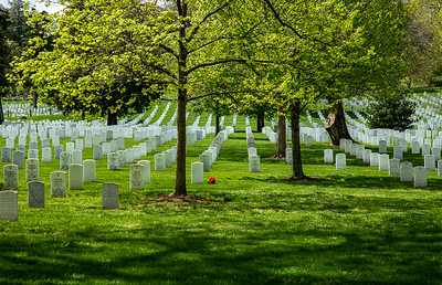 One of the places the @NationalParksAtNight workshop went was the *big* (and way better known) National Cemetery in Arlington.    April 25, 2021  ©2021 Henry S. Winokur