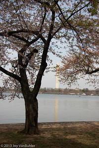 Washington DC - 10 Apr 09